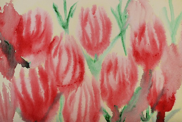 tulips, flowers, watercolour, aquarel