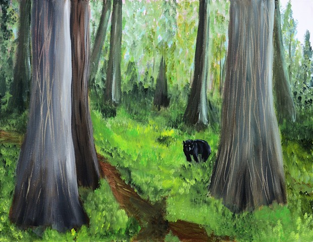Bear, nature, trees, cedar, forest