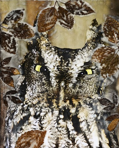 encaustics, nature, birds, owl