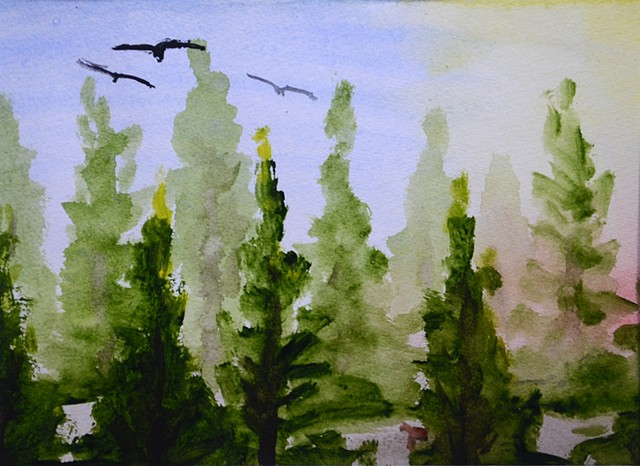 nature, forest, birds, vultures, trees