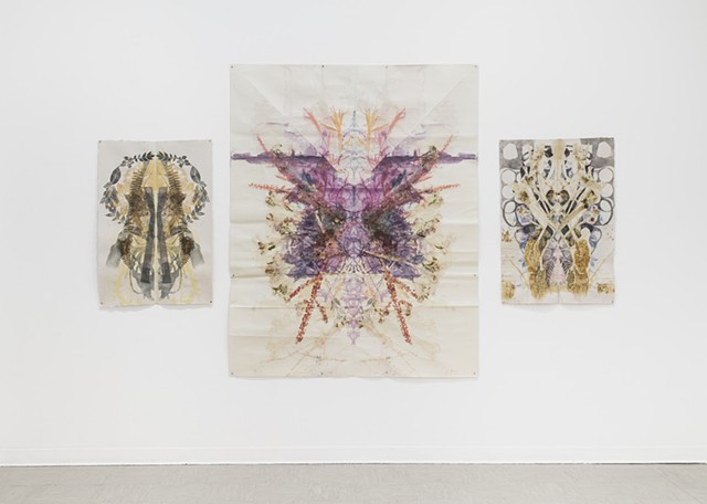 "Installation View ""Altered States"" Emily Davis Gallery,  Akron University"