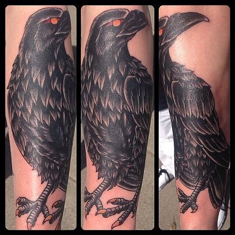 Big Forearm Raven