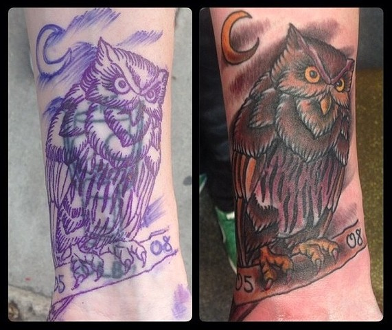 Owl Cover-up