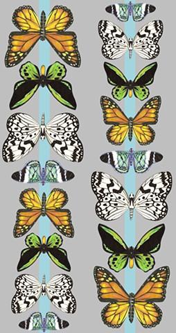 Butterfly Stripe 1