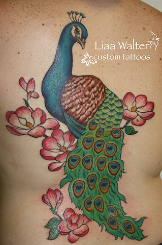 Peacock with magnolias