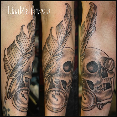 Skull, with feather pen