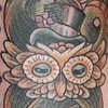 Octo- owl