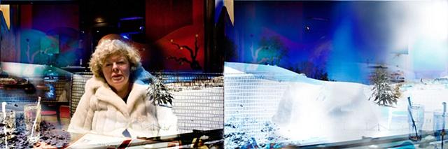 Untitled (Snow 2009)
