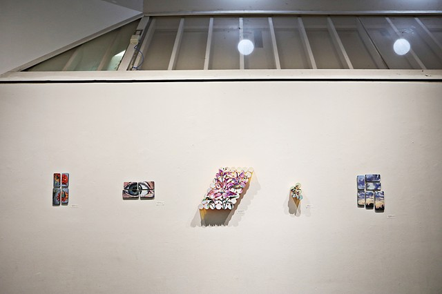 Medicine Cabinet Exhibition Installation, The ArtsCenter Nicholson Gallery, February 2019, Photo Credit: Juli Leonard