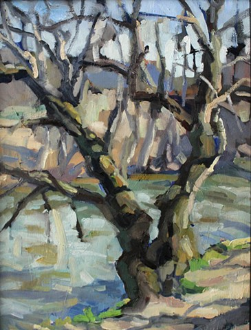 French Broad River Tree, 11x14, oil on canvas, available