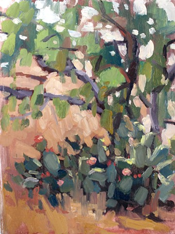Cacti in the Shade, 6x8in, oil on panel, available