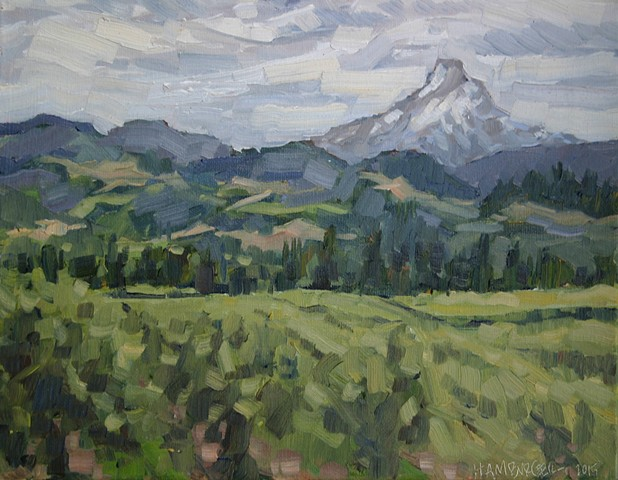 Hood River Vineyard 11x14in Oil