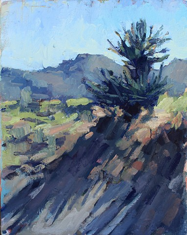 Yucca, 8x10in, oil on canvas, available