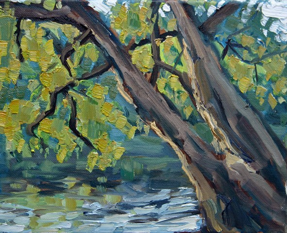 Trees on French Broad 8x10