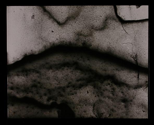 Ganglions & Cells (V.3)
