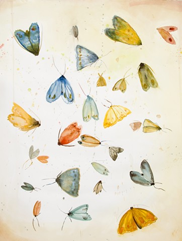 a gatheirng of moths, watercolor, pemcil on paper
