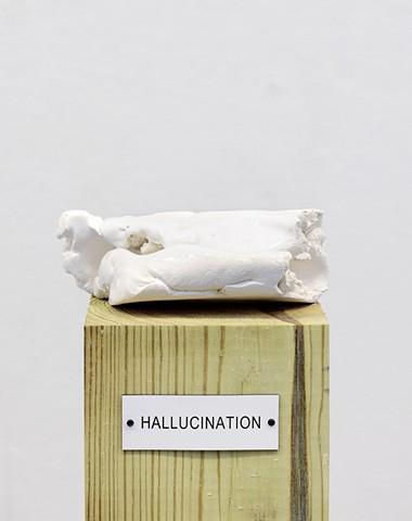 "Detail: Untitled (Plinth Studies with Ambiguous Nameplate Augmentation) [""Hallucination""]"