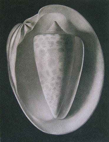 Cone I