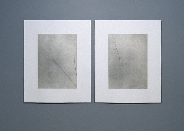 Untitled/Diptych