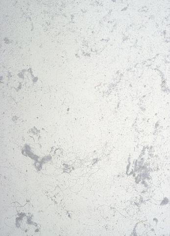 Dust Print #11