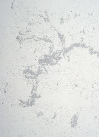 Dust Print #10