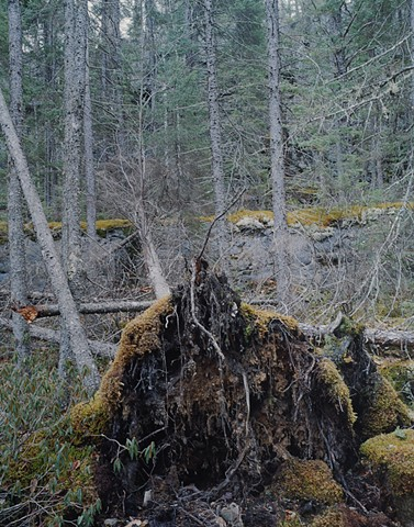 Near Magnetic Rock, Gunflint Trail, Minnesota  2004