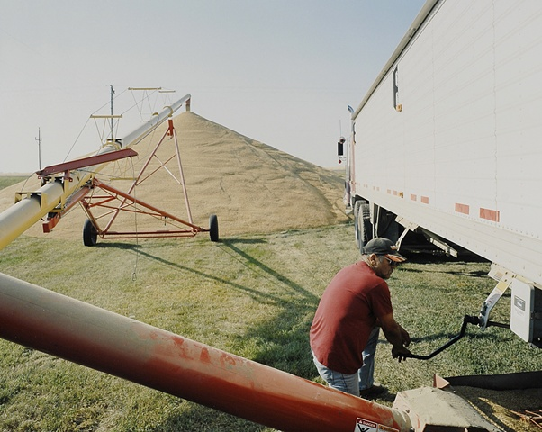 Robert, Barley Harvest, Kenmare, North Dakota  2009