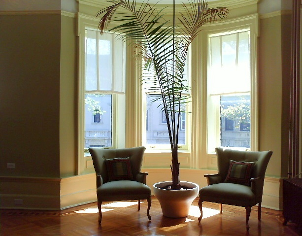 Conversation area in bay window with chairs and plants by Jane Interiors NYC