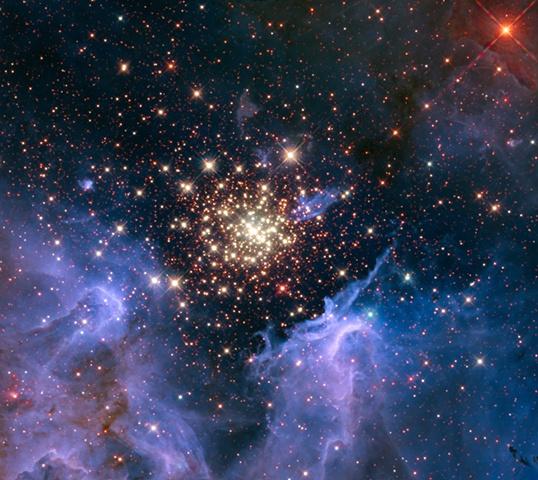 Stars #5