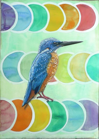 kingfisher perching, tantra, dots