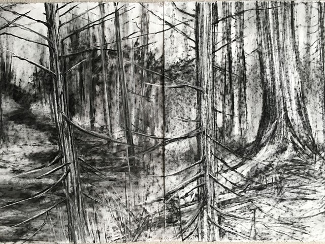 Stop motion charcoal drawing animation for the Blue Forest Opera