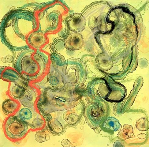 Protozoa I