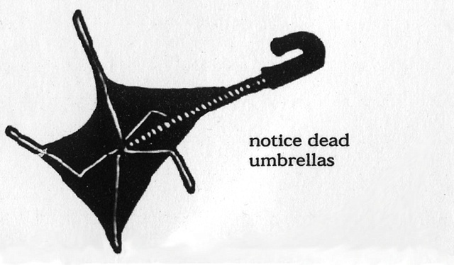 Notice Dead Umbrellas