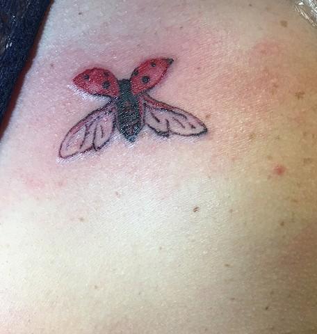 Tiny Ladybug for Roxy