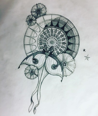 Moon Mandala with Luna Moth (sketch)
