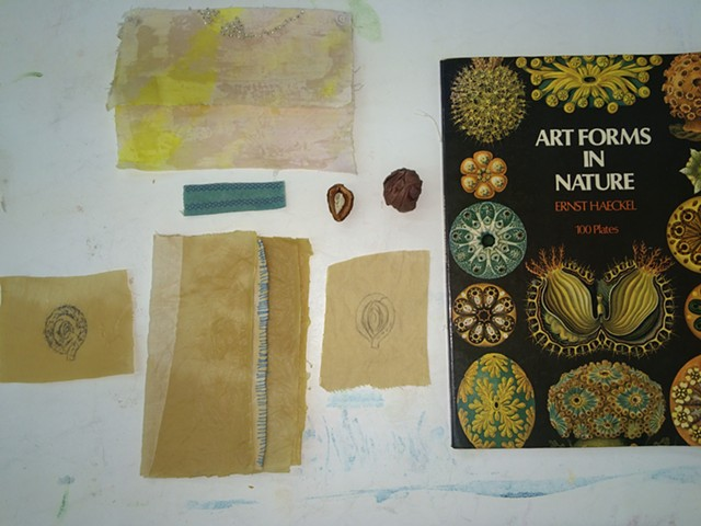 Instructor, One Week Workshop, Natural Dyes, Maps, Charts and Diagrams, Arrowmont, Tennessee