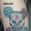 Rachel's Skull Rose (healed0