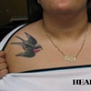 Holly's Sparrows (healed)
