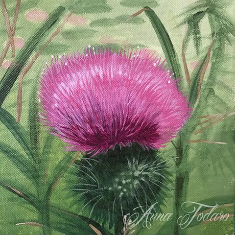 Thistle (Nippersink Prairie Walk)