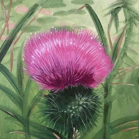 Thistle painting by Anna Todaro Sadur