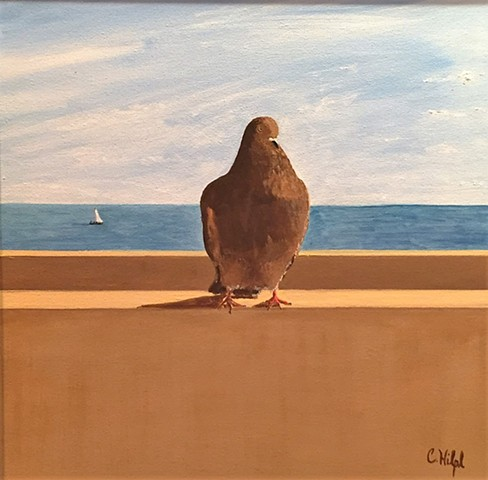 Painting of Pigeon