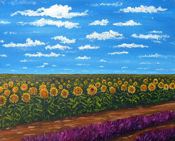 Field of Sunflowers 2