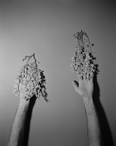 Untitled (Michael and Dried Flowers)