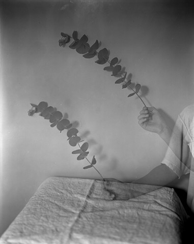 Untitled (Ryan with eucalyptus)