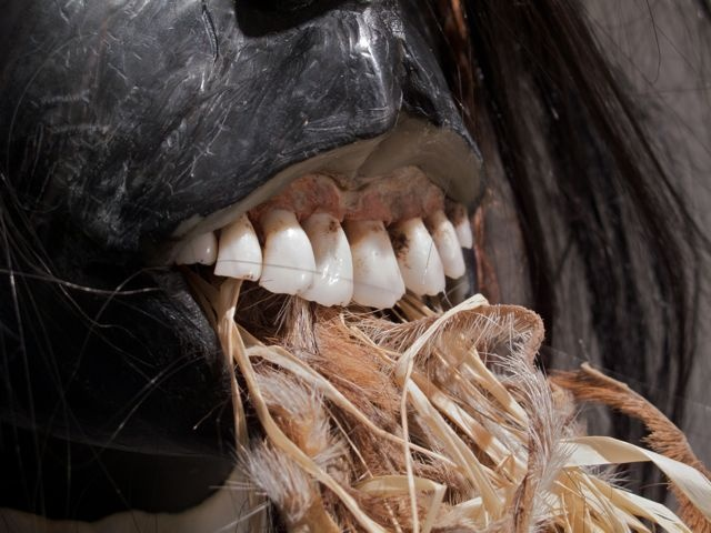 Alma, detail: teeth