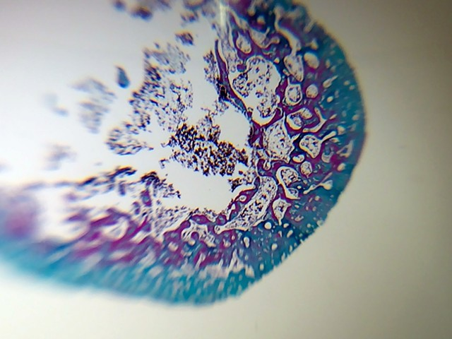 Abstract Micrography I