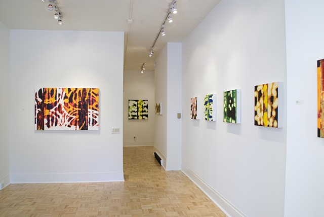 Glow, solo exhibit, Bridgette Mayer Gallery, Philadelphia