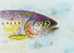 Purple Trout
