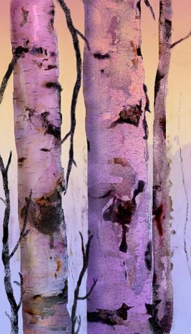 Arctic Light Birch