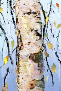 White Birch/Leaf Jazz